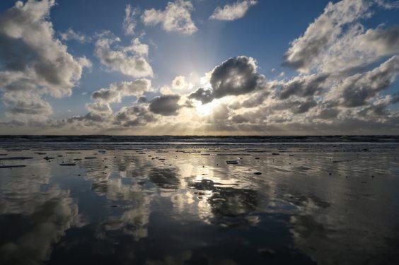 back-light-baltic-sea-beach-163867
