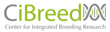 cibreed