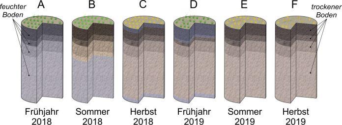 Dürre - Bodenwasservorrat