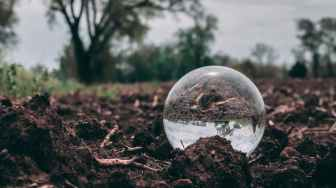 closeup photo of clear glass ball on soil