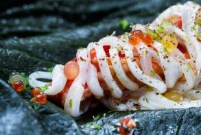 496_Loligo_forbesii_with_lobster_-_foto_Jonas_Drotner_Mouritsen
